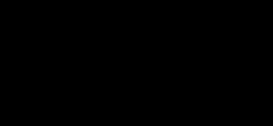 logotipo tipográfico Saguar color negro